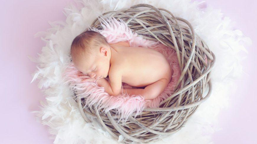 Bebin svet